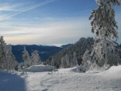 """Blick vom Grenzkamm (Rittsteiger Seite - """"Rotes Kreuz"""") zum Ossergipfel und auf die Böhmischen Berge"""