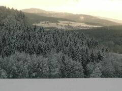 Aussicht oberhalb unseres Quartiers in Buchenau: Blick in den Bayerwald