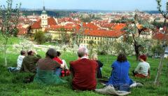 Lesepause auf dem Petrin mit herrlichem Blick auf Prag