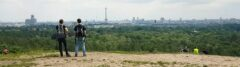 Blick vom Drachenberg nach Osten: Grunewald - Berlin Mitte