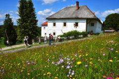 Der Christianshof im Mühlviertel