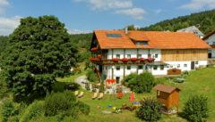 Der gemütliche Draxlerhof in Waldhäuser