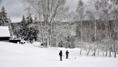 Winterzauber in den Wäldern über Eisenstein