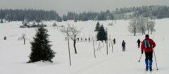 Böhmische Erzgebirgsmagistrale: Langlauf entlang hunderter Schneestangen (auf der Hochebene gibt es oft Schneesturm mit nur 5 m Sichtweite)