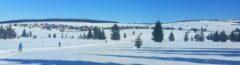Von Dorf zu Dorf durch die Schneelandschaft des Erzgebirges ziehen