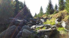 Die Iser / Jzera ist ein quicklebendiges Gewässer