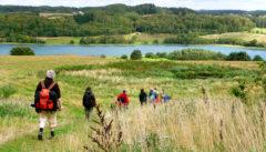 Die Kaschubei. Wiesen, Seen und kleine Hügel formen ein ideales Wanderngebiet.