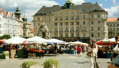 Der Krautmarkt. Das lebendige Zentrum mährischer Lebenslust und - kunst