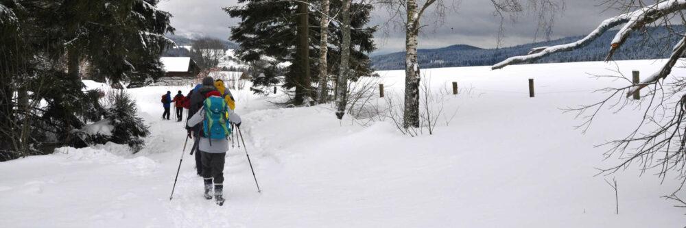 Das Künische: Ein ideales Gebiet für besinnliche Winterwanderungen