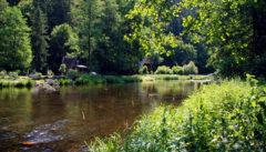 Die hübsche Moravica lädt zum Wandern ein