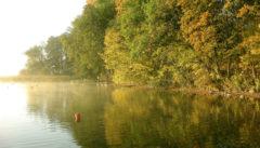 Morgenlicht am See von Kietlice.