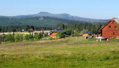 Auf dem Böhmerwaldplateau entspringt die Moldau
