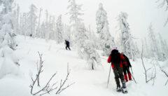Attraktiver Weg zum Gipfel: Die Himmelsleiter