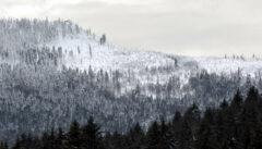 Im Winter eine echte Herausforderung: Der Osser mit seinen 1293 Metern