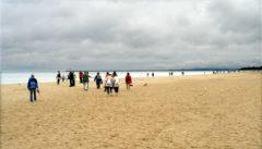 Der breite Strand von Swinemünde. Ideal, um sich für Strandwanderungen einzulaufen.