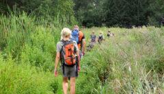 Besinnliches Wandern an den böhmischen Teichen