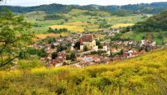 In Goldruten-Terassen gebettet: die Bischofsburg von Birthelm