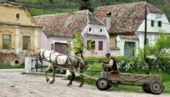 Dorfbilder wie dieses machen den Reiz einer Siebenbürgenreise aus