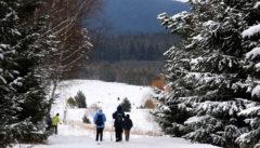 Winterwanderungen hinter der böhmischen Grenze
