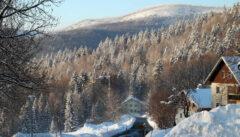 Waldhäuser: das höchstgelegene Dorf im Bayerischen Wald