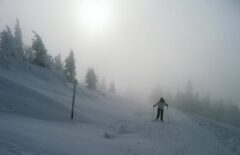 Am Arber im Nebel