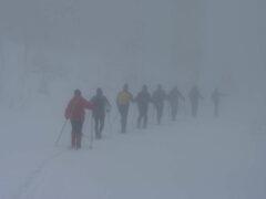 Im Nebel: Skilnaglauf querfeldein
